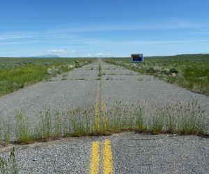 The 20-Year Road to Net-Centric Marketing, Part II