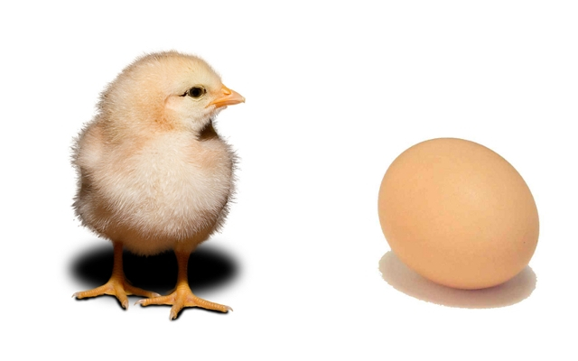 Marketing Automation Chicken or CRM Egg?
