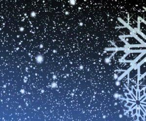Holiday Carol: S-E-O, S-E-O, S-E-O!